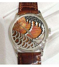 Patek Philippe [NEW-全新] 5077P 铂金自动机械男表/收藏款 Limited Edition